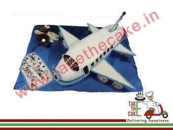 flight-cake-1
