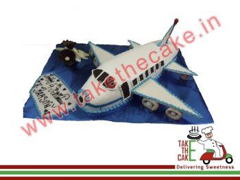 flight-cake-2